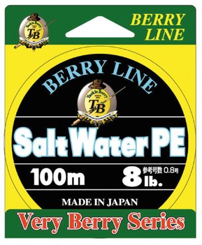 BERRY LINE Salt Water PE 0.8gou lb.test 8